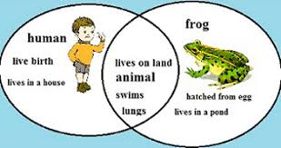 compare u0026 contrast lesson for kids definition u0026 examples video