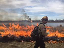 Wildfire Tools by Prescribed Fire Fire Prevention And Control