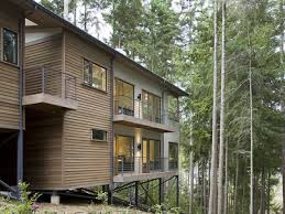 emejing raised home designs images decorating design ideas