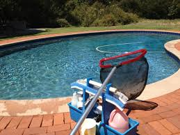 what to do after your pool is open mikes pool service