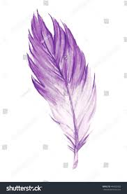 purple feather watercolor purple feather purple stock illustration