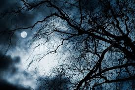 scary scenery with trees moon and clouds stock