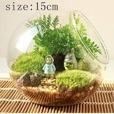 Large Round Glass Vase Terrarium Vase Round Vase Flower Plant Stand Glass Vase Hydroponic
