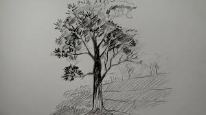 different type of pencil art how to draw a tree using pencil a