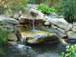 backyard fish pond maintenance