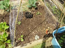 how to make a trellis for cucumbers how to build a low cost vegetable garden trellis 5 steps with