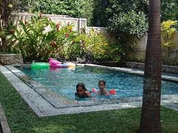 tree ideas for backyard decor beautiful small inground pools for small yards for outdoor