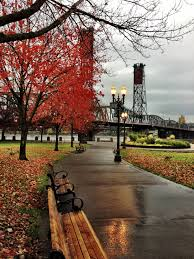 waterfront park portland oregon in fall autumn rain city