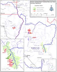 Columbia River Map Interior Columbia River Basin Technical Recovery Team Northwest