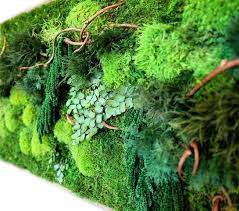 Moss Stunning Maintenance Free Living Walls Are Made With Real