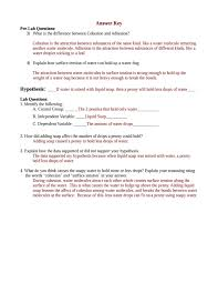 Pathfinder Honors Worksheets Scientific Method Lab Experiment Surface Tension Lab Experiment