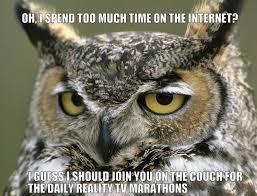 Owl Memes - condescending owl condescending owl the real sasha