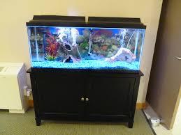 Home Aquarium Articles With Aquarium Design Home 40 Noir Tag Aquarium For Home