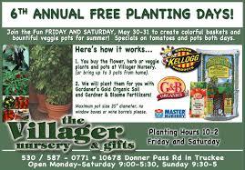 Head Planter Pots For Sale Mountain Gardening Botanical Nursery Garden Gifts Hydroponics