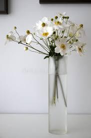 Flowers Glass Vase Home White Anemone Flowers Glass Vase V Stock Photo Image