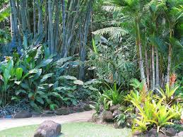 fabulous tropical landscaping ideas for front of house
