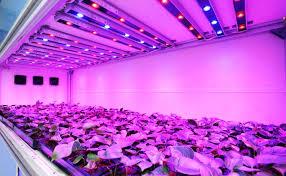 led light design amazing commercial led grow lights commercial