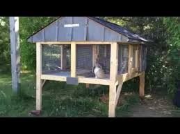 Build Your Own Rabbit Hutch Plans 125 Best Pets Images On Pinterest Exotic Animals Rodents And