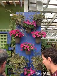 Flower Planter Ideas by Top 25 Best Window Box Planter Ideas On Pinterest Outdoor