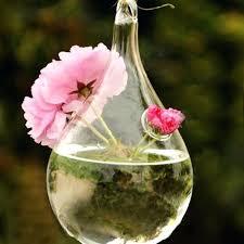 large hanging glass terrarium uk best glass 2017