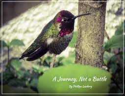 a journey not a battle phillipa and eric leseberg by finally