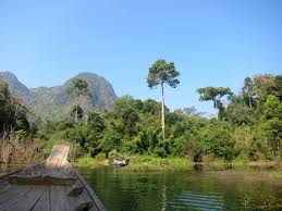 tranquility in thailand khao sok national park ashley wanders