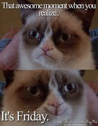 Grumpy Cat Friday Meme - grumpy cat threatens to make disneyland a not so happy place on
