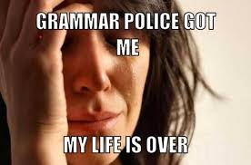 Spelling Police Meme - practical punctuation grammar for indie authors