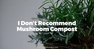 why i don u0027t recommend mushroom compost