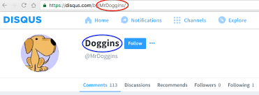 what is the difference between my userna disqus