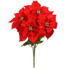 shop for the red velvet poinsettia bush by ashland at michaels