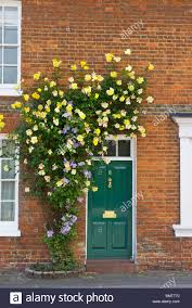 climbing roses over a green front door in a traditional red brick