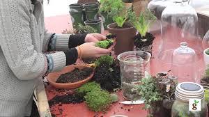 how to build a moss terrarium youtube
