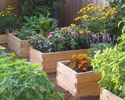 how to create raised vegetable plant beds fruit basket flowerland