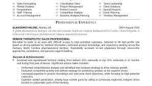 resume bullet points exles resume bullet points exles here are inside sales resume best
