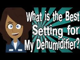 Cheap Dehumidifier For Basement by What Is The Best Setting For My Dehumidifier Youtube