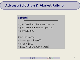 Blindness Chapter Summaries 1 Risk And Information Chapter Chapter Fifteen Overview 1