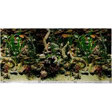 halloween fish background aquarium u0026 fish tank backgrounds 3d aquarium backgrounds petco