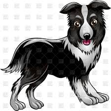 funny border collie drawn in cartoon style vector image 43197