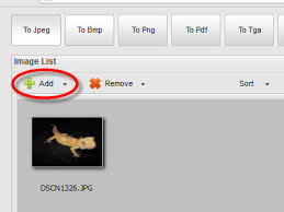 converter raw how to convert camera raw to jpg using anypic image resizer free