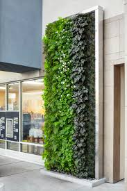 224 best green wall images on pinterest vertical gardens green
