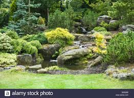 rock garden with pond waterfall shrubs and trees in garden