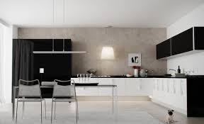 black and white kitchen cabinets home design