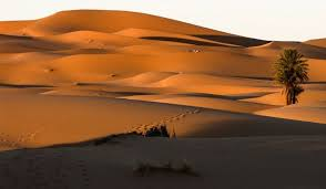 photo of snow fall in sahara desert first time in 37 yrs