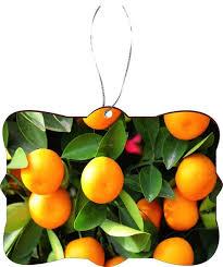 kumquat festival flowers fruit design rectangle