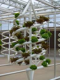 indoor hydroponic garden ikea launches indoor garden that can grow