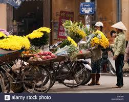 Flower Garden Hanoi by Flower At Hanoi Stock Photos U0026 Flower At Hanoi Stock Images Alamy