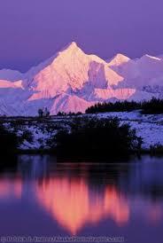 brilliant colors of denali national park alaska wallpapers horseshoe lake at denali national park alaska http www lj