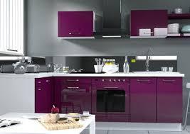 cuisine aubergine et gris cuisine aubergine et gris idées de design moderne