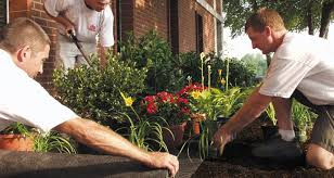 Down To Earth Landscaping by Landscape Fabric U0026 Down To Earth Products Dewitt Company